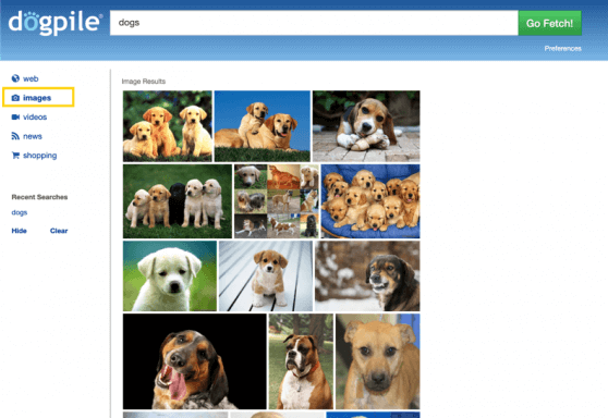 Dogpile search engine - image search results