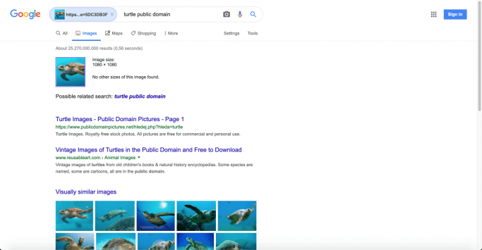 Image results on Google when you search for a Facebook photo
