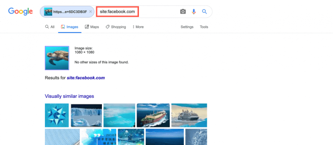Limit the images found to photos on Facebook in the Google search results